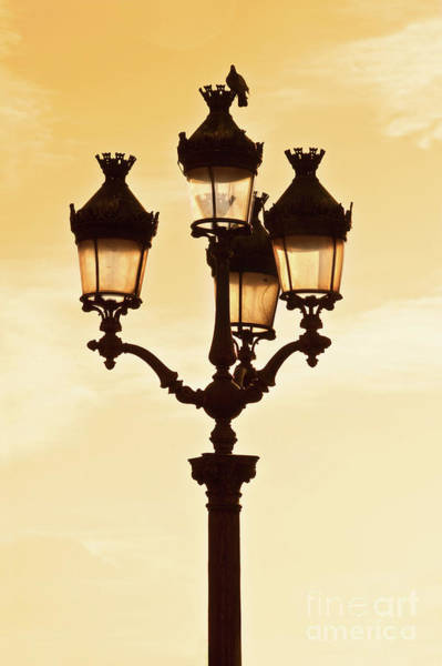 Wall Art - Photograph - Street Light In Paris by Delphimages Photo Creations
