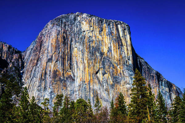 Wall Art - Photograph - Striking El Capitan by Garry Gay