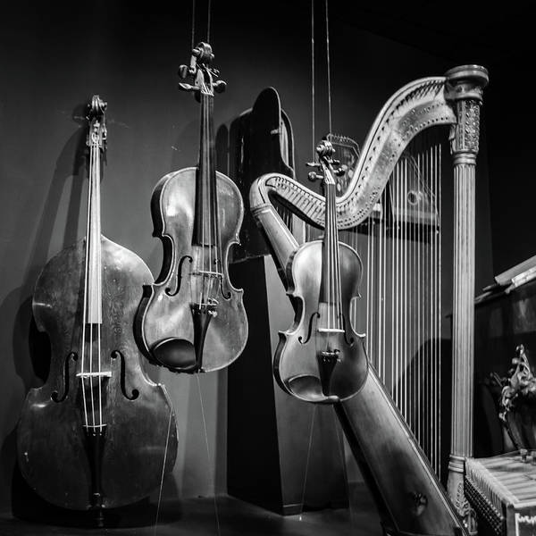 Art Print featuring the photograph Stringed Instruments by Borja Robles