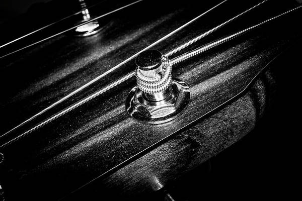 Photograph - Strings Series 14 by David Morefield