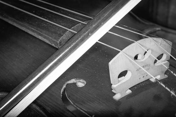 Photograph - Strings Series 32 by David Morefield