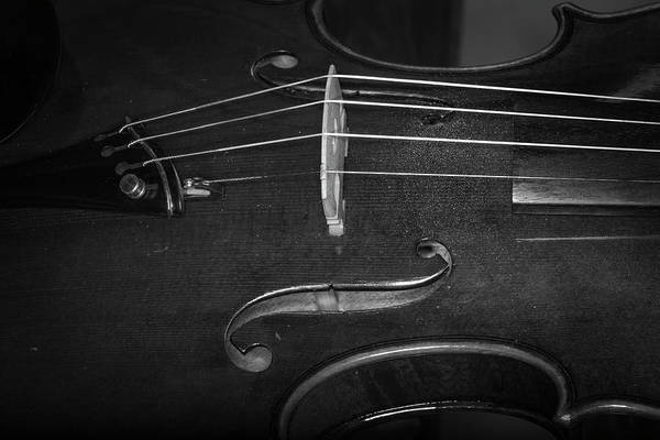 Photograph - Strings Series 47 by David Morefield