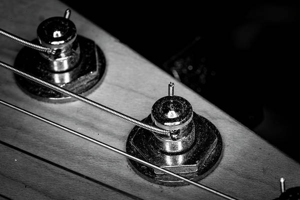 Photograph - Strings Series 9 by David Morefield