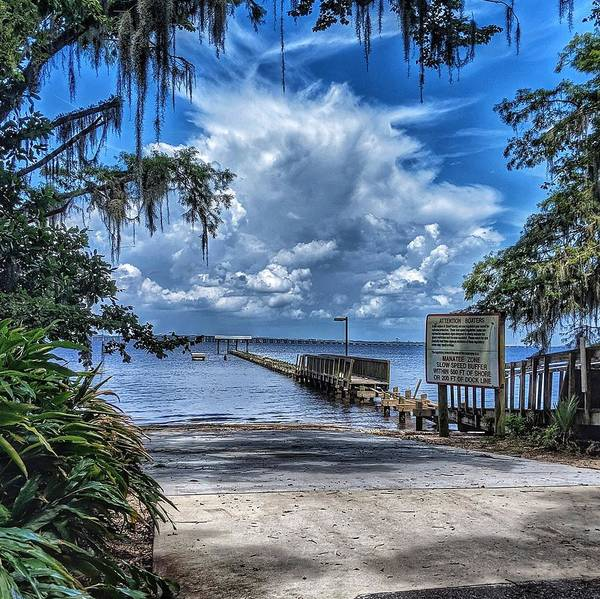 Photograph - Strolling By The Dock by Portia Olaughlin