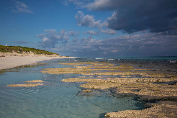 Photograph - Stromatolites On Stocking Island by Thomas Kallmeyer