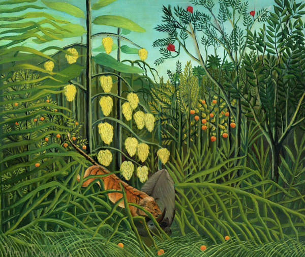 Struggle Painting - Struggle Between Tiger And The Bull In A Tropical Forest, 1909 by Henri Rousseau