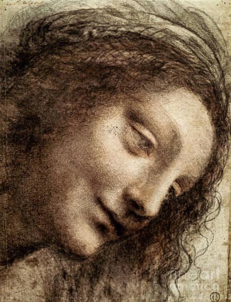 Drawing - Study For The Head Of The Virgin by Leonardo da Vinci
