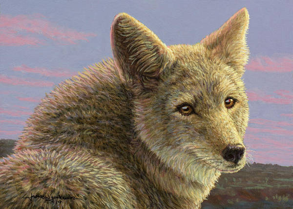 Painting - Study Of A Coyote by James W Johnson