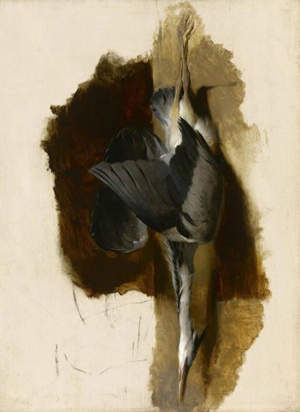 Landseer Wall Art - Painting - Study Of A Dead Heron by Edwin Landseer