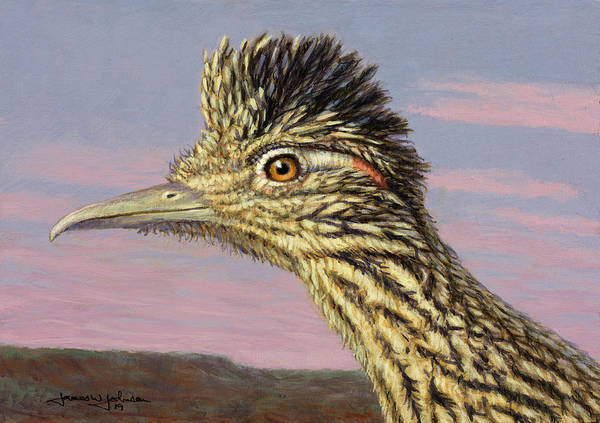 Painting - Study Of A Roadrunner by James W Johnson