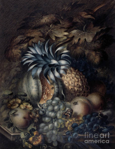 Wall Art - Pastel - Study Of Fruit  by Mary Bradley