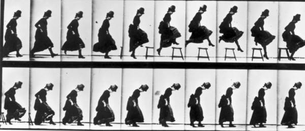Motion Photograph - Study Of Motion by Eadweard Muybridge