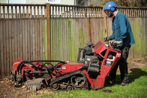 Photograph - Stump Grinder Near An Aging Fence by Tom Cochran