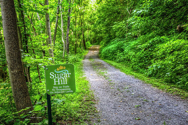 Photograph - Sugar Hill Trail by Dale R Carlson