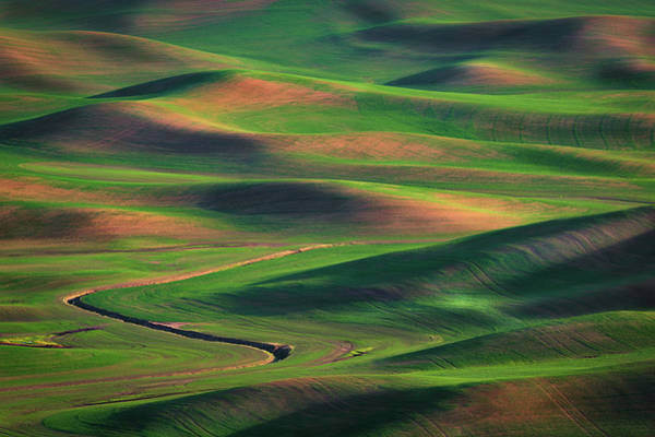 Photograph - Summer Afternoon In The Palouse by Kristen Wilkinson