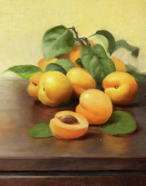 Wall Art - Painting - Summer Apricots by Robert Papp