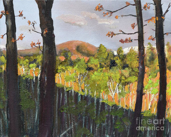 Painting - Summer At Pink  Knob In Ellijay by Jan Dappen