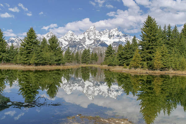 Photograph - Summer At Schwabacher by Ronnie and Frances Howard