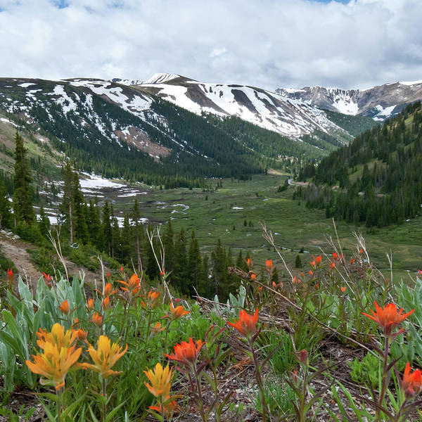 Photograph - Summer Beneath Independence Pass by Cascade Colors