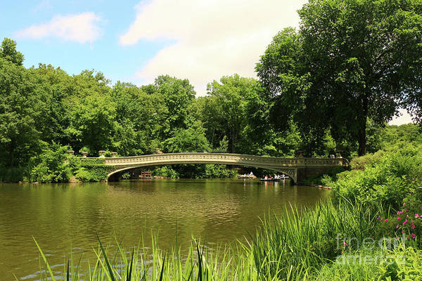Photograph - Summer Day In Central Park  by Christiane Schulze Art And Photography