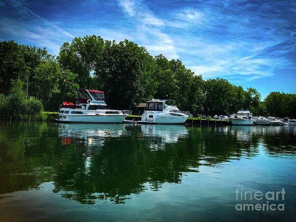 Wall Art - Photograph - Summer Fun by William Norton