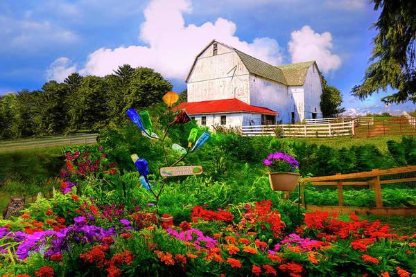 Photograph - Summer Garden by Debra and Dave Vanderlaan