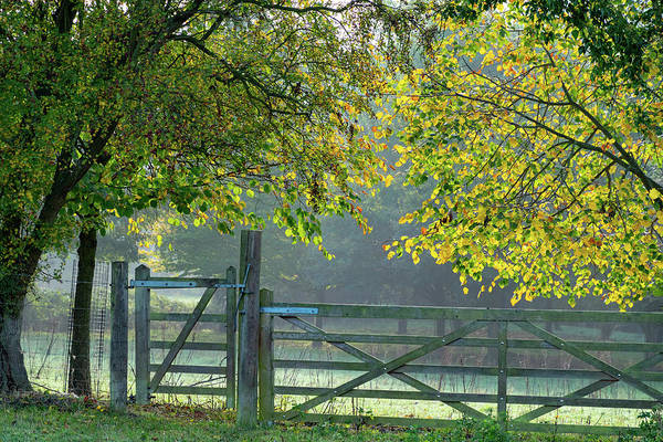 Photograph - Autumn Gate by Mark Hunter