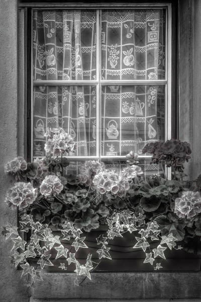 Photograph - Summer Geraniums In The Window Black And White by Debra and Dave Vanderlaan