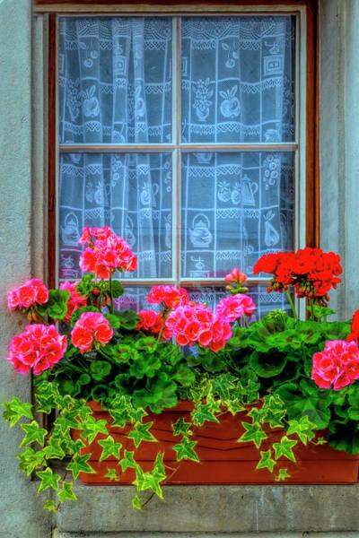 Photograph - Summer Geraniums In The Window by Debra and Dave Vanderlaan