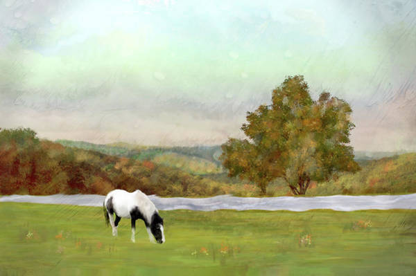 Wall Art - Mixed Media - Summer Grazing by Mary Timman