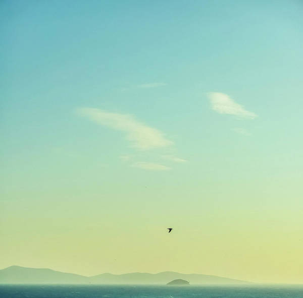 Photograph - Summer Joy In The Mediterranean IIi by Anne Leven