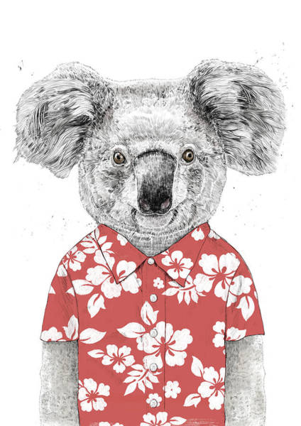 Funny Drawing - Summer Koala by Balazs Solti