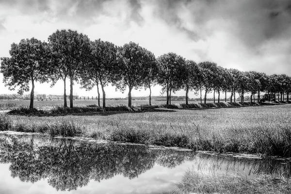 Photograph - Summer Line Up In Black And White by Debra and Dave Vanderlaan