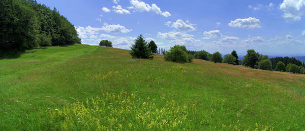 Photograph - Summer Meadow by Sun Travels