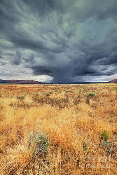 Photograph - Summer Monsoon Storm Southern Utah by Dave Welling