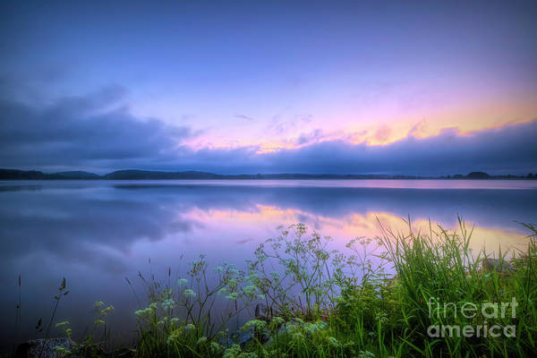 Wall Art - Photograph - Summer Morning At 04.28 by Veikko Suikkanen