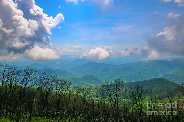 Art Print featuring the photograph Summer Mountain View by Tom Claud