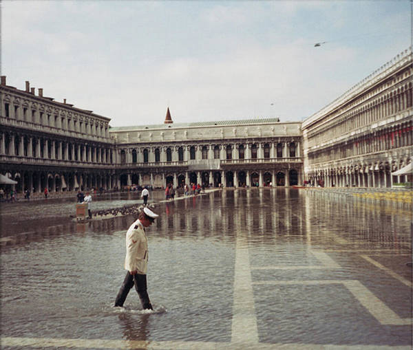 Photograph - Summer Rain by Maria Reverberi