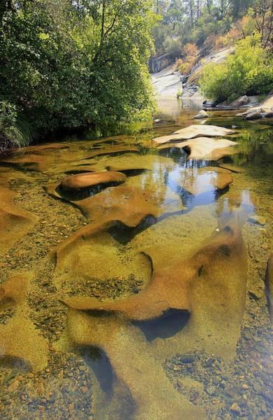 Photograph - Summer Serenity  by Sean Sarsfield