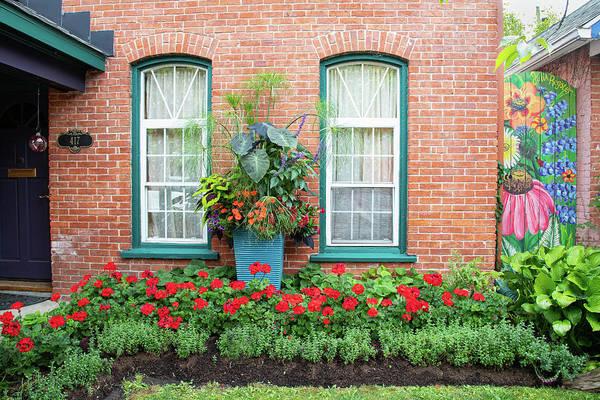Photograph - Summer Street Garden by Marilyn Cornwell