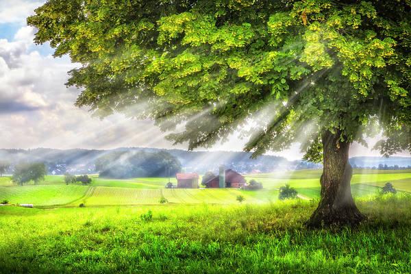 Photograph - Summer Sunrays by Debra and Dave Vanderlaan