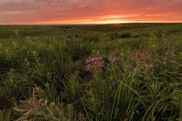 Photograph - Summer Sunset by Scott Bean
