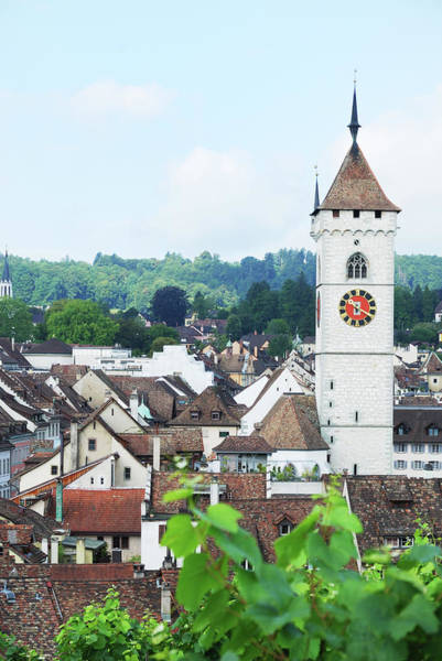 Vertical Landscape Photograph - Summer View Of Schaffhausen by Oks mit