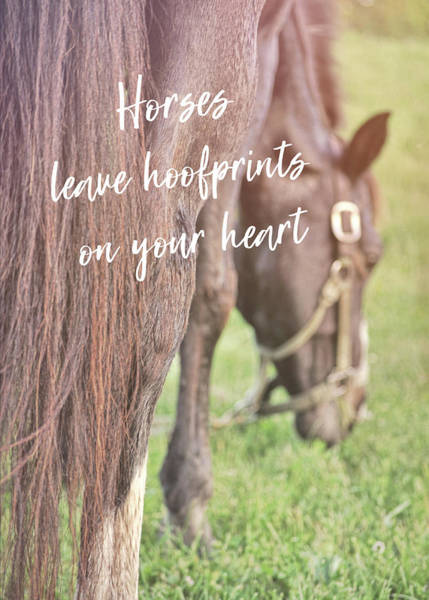 Photograph - Summer Views Quote by Dressage Design