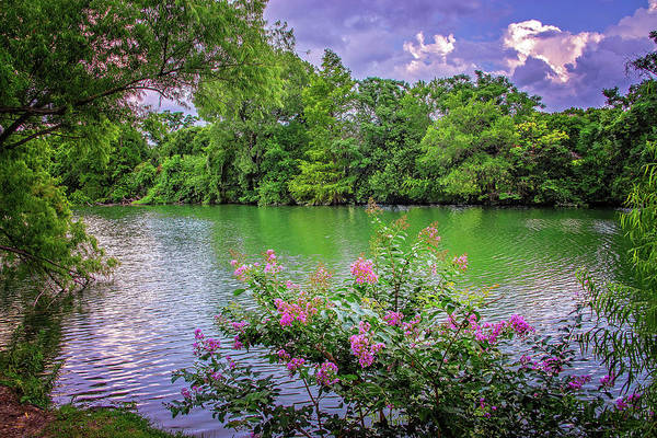 Photograph - Summer's Touch At Cibolo Creek by Lynn Bauer