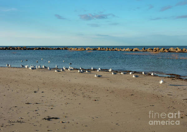 Wall Art - Photograph - Sun Bathers At Corporation Beach Cape Cod by Michelle Constantine