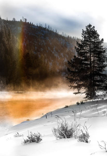 Photograph - Sun Dog Of Yellowstone by Karen Wiles
