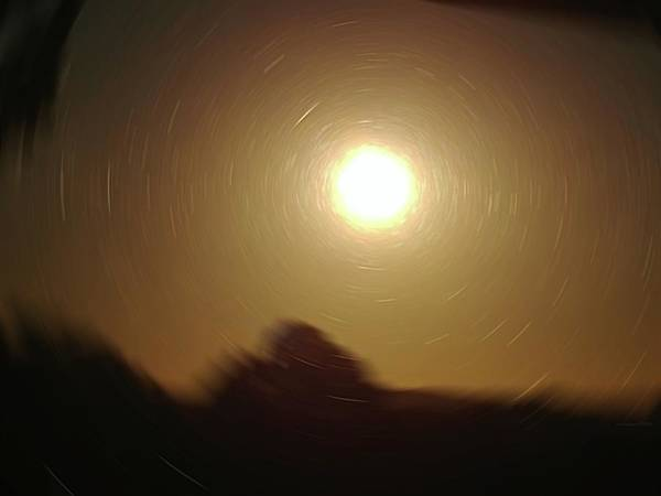 Digital Art - Sun Gazing by Vincent Green