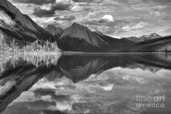 Photograph - Sun On The Trees At Medicine Lake Black And White by Adam Jewell