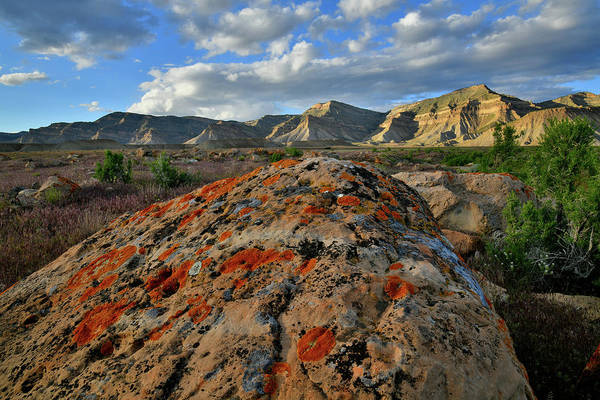 Photograph - Sun Sets On Book Cliffs In Grand Junction Co by Ray Mathis